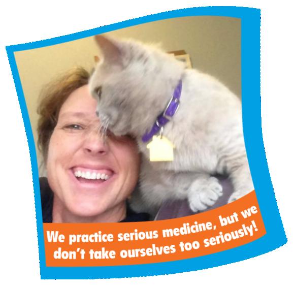 Dr. Renee Rucinsky, DVM, Dipl., ABVP (Feline Specialty) - Mid Atlantic Cat Hospital Veterinarian, Queenstown MD